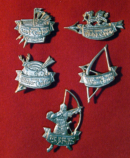 WSA silver badges